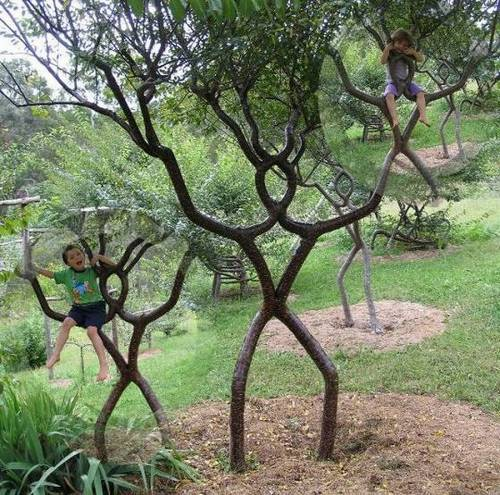Unbelievable most strange trees in the World | moco-choco