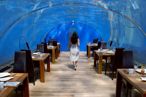 Most expensive restaurants in the world moco choco for Ithaa restaurant maldives
