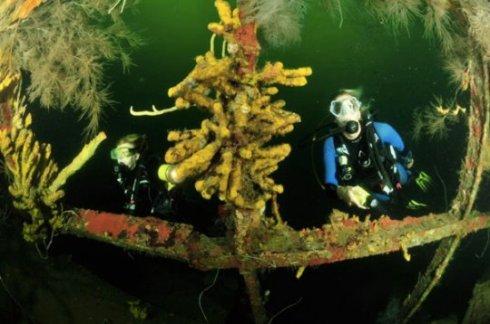 Bianca C shipwreck St George's Harbor, Grenada