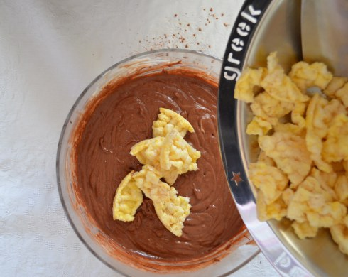 chocolate dessert recipe with Greek yogurt , honey and nuts 7