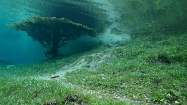Underwater Park in Tragoess, Styria, Austria. | moco-choco