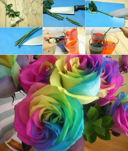 Rainbow Roses Tutorial