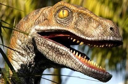 wrong perception about velociraptor