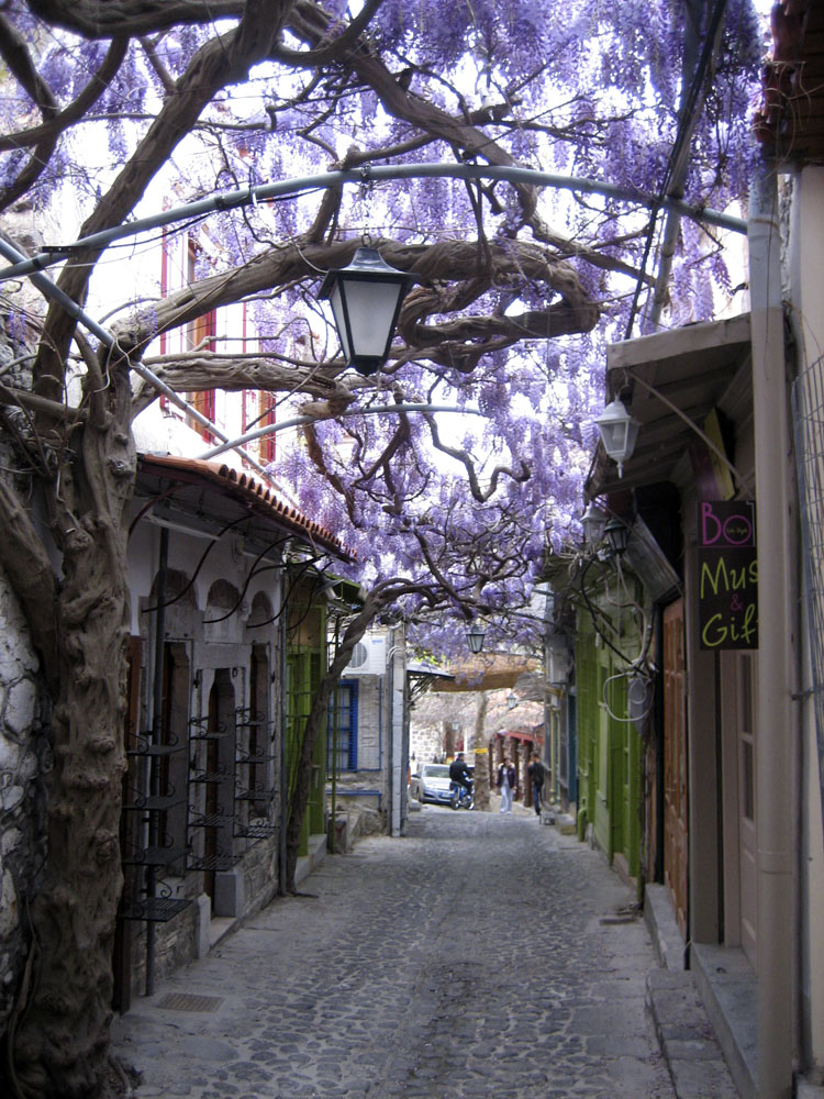 Lesvos Greece  city photos : amazing paths around the world Lesvos, Greece