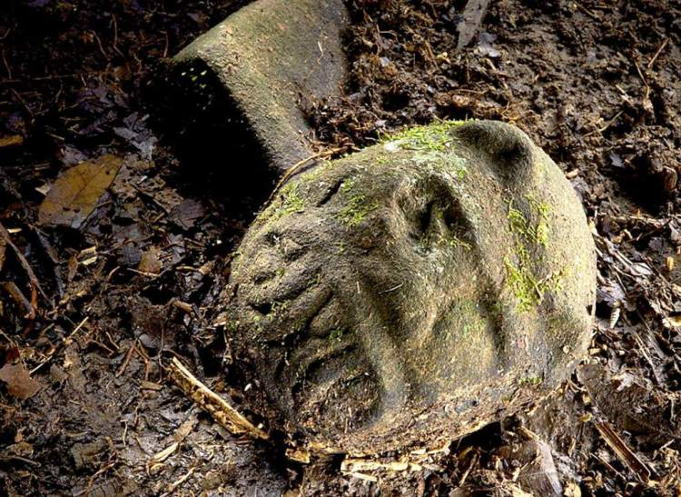 honduras lost city monkey maya ancient archaeology